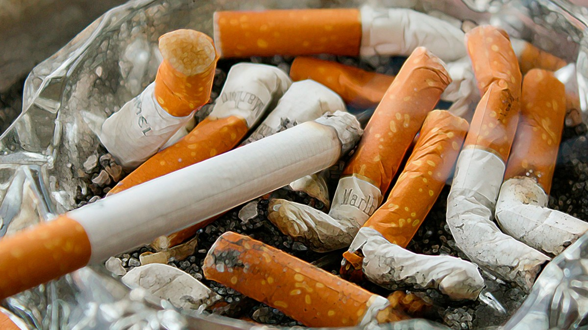 Sizce Dünyada Kaç Kişi Sigara İçiyordur?